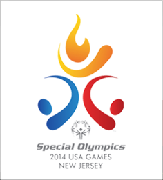 2014 National Games logo