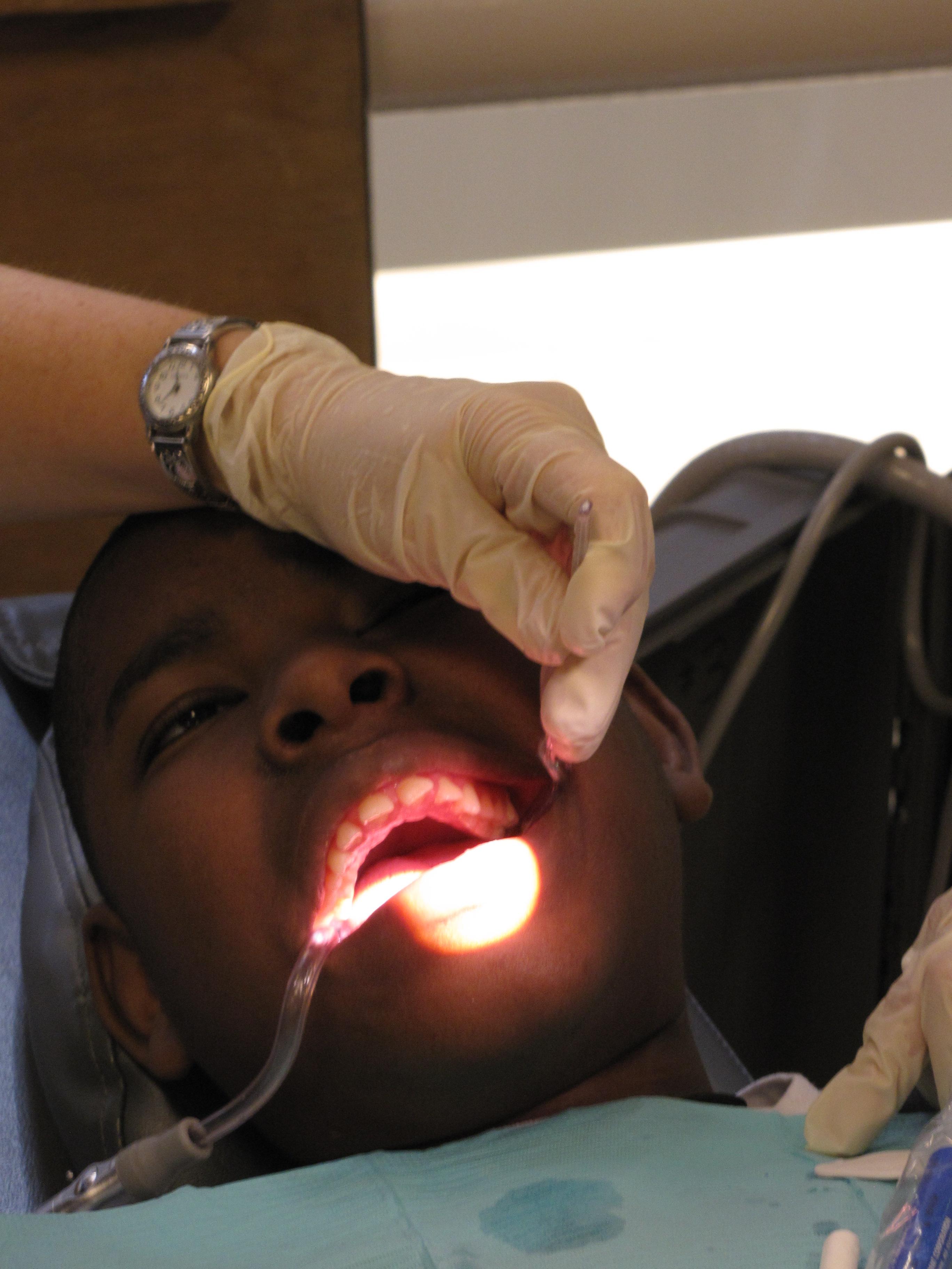 Oral Biology Masters 113